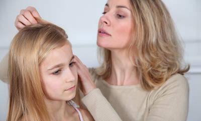 Kopfläuse – Mittel, die helfen