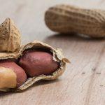 Erdnüsse in und ohne Schale