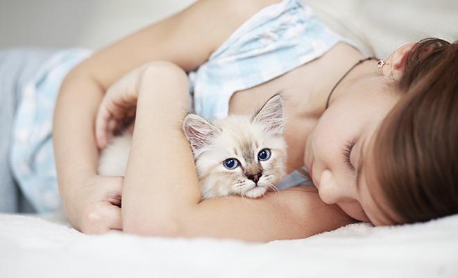 Allergien bei Kindern: Katzen fördern sie