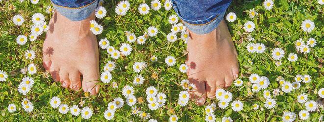Der beste Schutz vor Bienenstichen: Nicht mit nackten Füßen durch die Wiese wandern