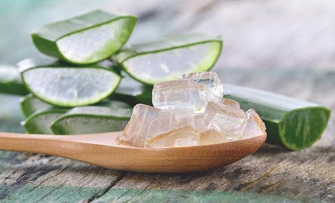 Gut für Haut, gut für den Darm? Der Wüstenlilie Aloe Vera wird ein großer Nutzen für die Gesundheit zugesprochen. Wir sagen ihnen, was dran und drin ist.