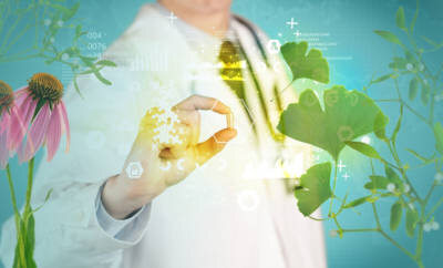 Phytotherapie ist mehr als Tees und Tropfen