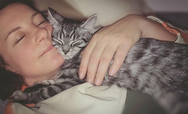 Haustiere bei Depressionen: Katze, Hunde & Co. lindern häufig die Symptome.