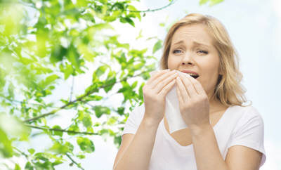Allergiegeplagten läuft ständig die Nase