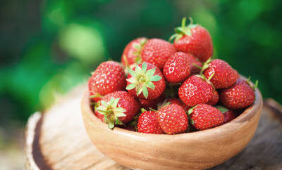 Feldfrische Erdbeeren in einer Holzschüssel.