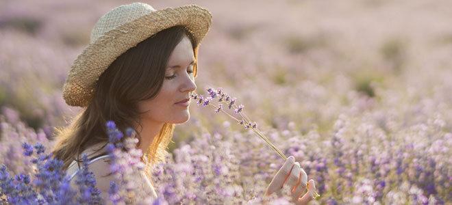 Die Heilpflanze Lavendel enthält Stoffe, die entspannen und beruhigen,