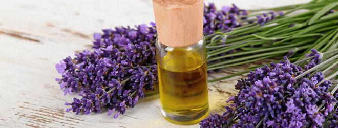 Lavendel ist ein natürliches Beruhigungsmittel. Erfahren Sie mehr über die Heilpflanze.