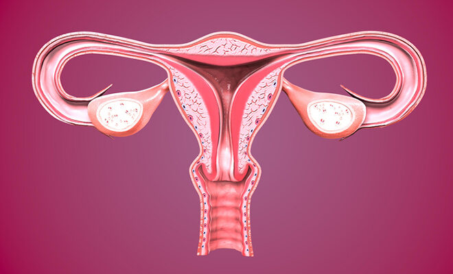 eileiterschwangerschaft durchfall