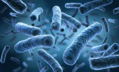 Legionellen sind Stäbchenbakterien, die eine schwere Lungenentzündung verursachen können - die Legionellose.