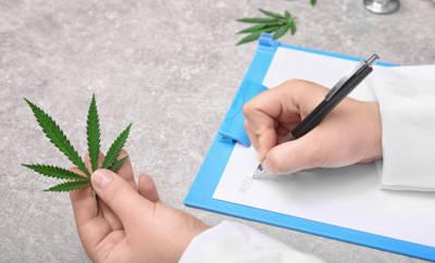 Cannabis ist in den letzten Jahren für Mediziner immer interessanter geworden.