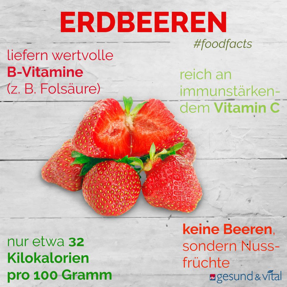 Eine Grafik mit verschiedenen Fakten zu Erdbeeren. Sie zeigt Wissenswertes über die gesunden Inhaltsstoffe der Erdbeeren.