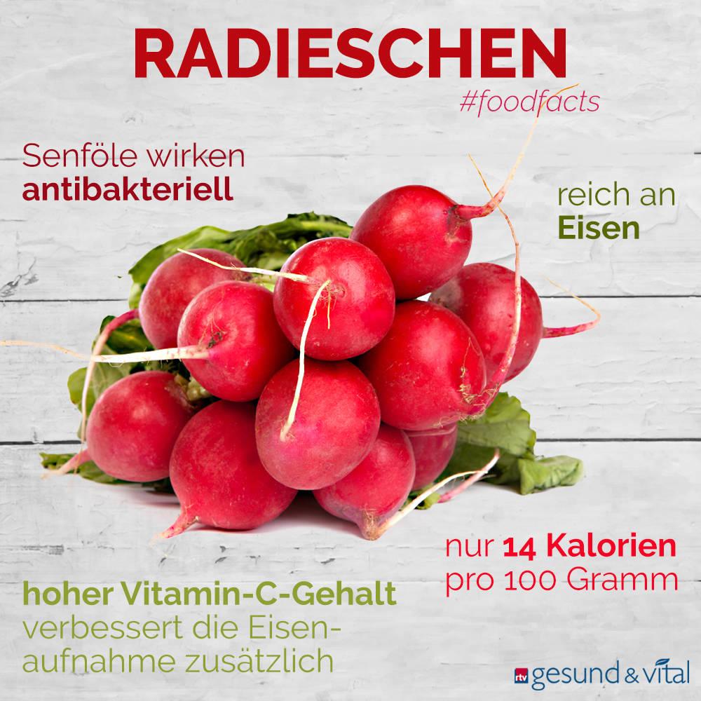 Eine Grafik mit verschiedenen Fakten zu Radieschen. Sie zeigt Wissenswertes über die gesunden Inhaltsstoffe und den Vitamin-C-Gehalt des Gemüses.