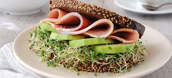 Brot mit Schinken, Gurke und Alfalfa