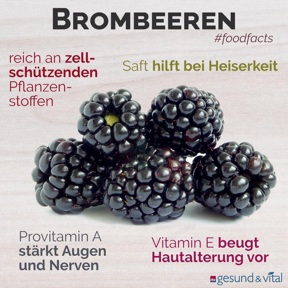 Eine Grafik mit verschiedenen Fakten zu Brombeeren. Sie zeigt Wissenswertes über die gesunden Inhaltsstoffe und die Wirkung der Frucht.