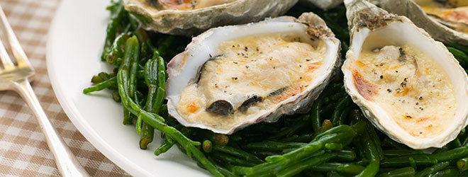 Meeresspargel oder Queller mit Muscheln