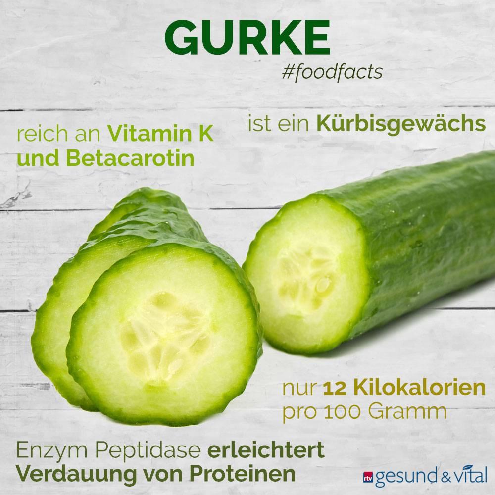 Eine Grafik mit Fakten zur Gurke. Sie zeigt Wissenswertes über die gesunden Inhaltsstoffe und den Kaloriengehalt des Gemüses.