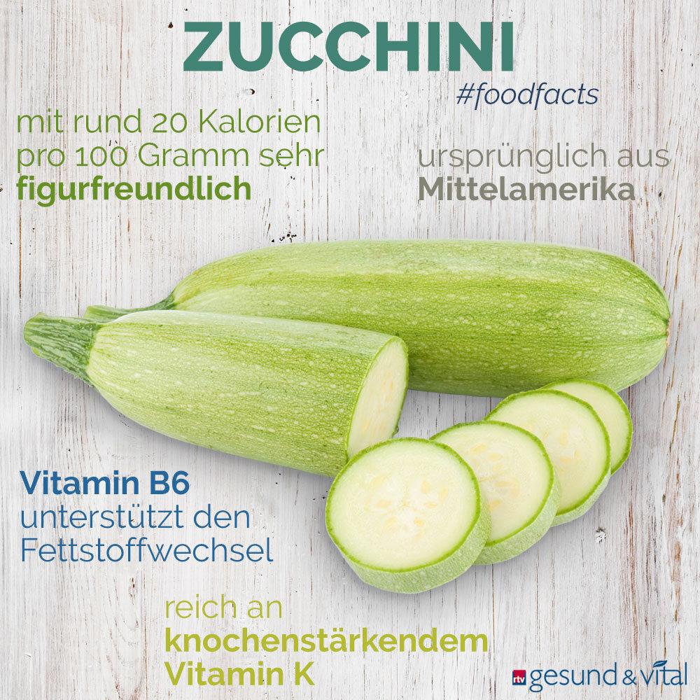 Eine Grafik mit verschiedenen Fakten zur Zucchini. Sie zeigt Wissenswertes über die gesunden Inhaltsstoffe und die Wirkung des Kürbisgewächses.