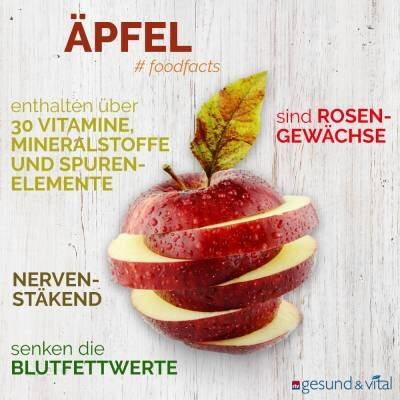 Eine Grafik mit verschiedenen Fakten zum Apfel. Sie zeigt Wissenswertes über seine gesunden Inhaltsstoffe.