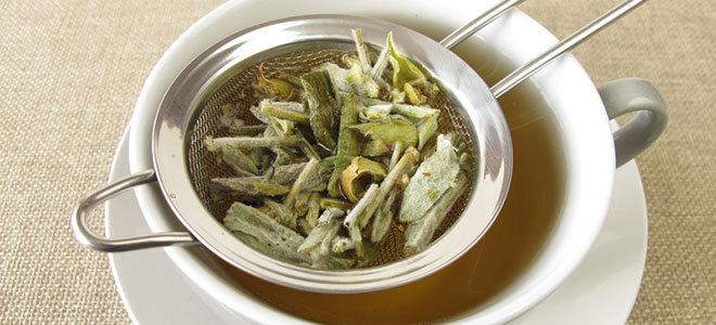 Eine Tasse mit frisch aufgebrühtem Bergtee. Das Heilkraut hilft unter anderem bei Verdauungsbeschwerden und fördert die Entspannung.