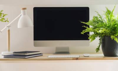 Ein Schreibtisch mit Computer, Pflanzen und Lampe.
