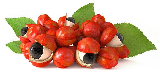 Reife Guaranafrüchte mit Samen die wie Augen aussehen.