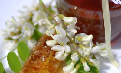 Ein Zweig mit Akazienblüten, daneben ein Glas Akazienhonig und ein Stück Wabe mit Honig gefüllt.