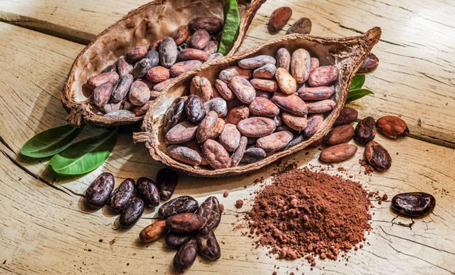 Kakaobohnen und Pulver.