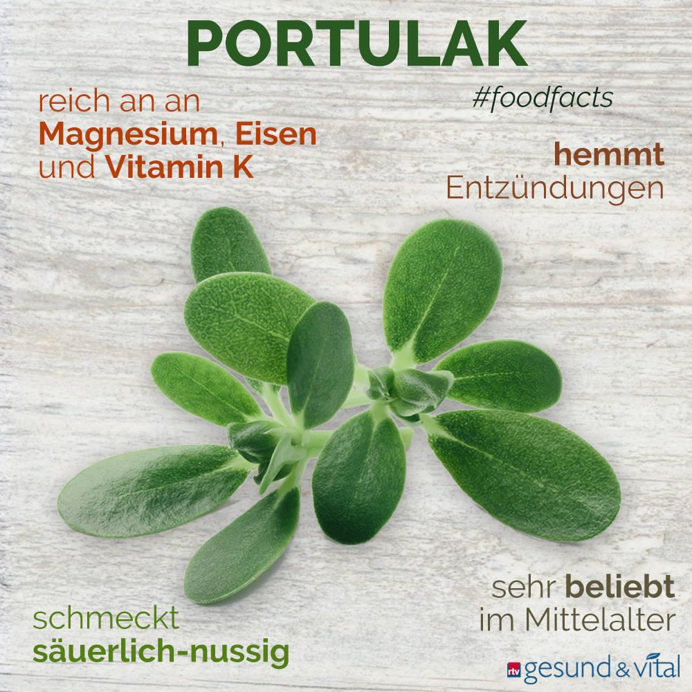 Eine Grafik mit verschiedenen Fakten zu Portulak. Sie zeigt Wissenswertes über Geschmack, gesunde Inhaltsstoffe und Wirkung.