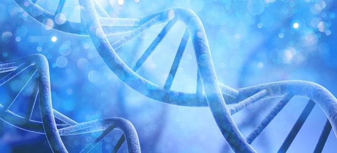 Zwei DNA-Stränge.