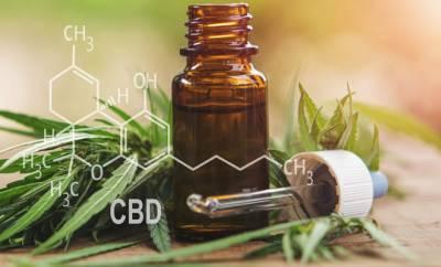 Frische Hanfblätter und Öl mit Cannabidiol, einem gesunden, nicht-berauschenden Wirkstoff in Cannabis.