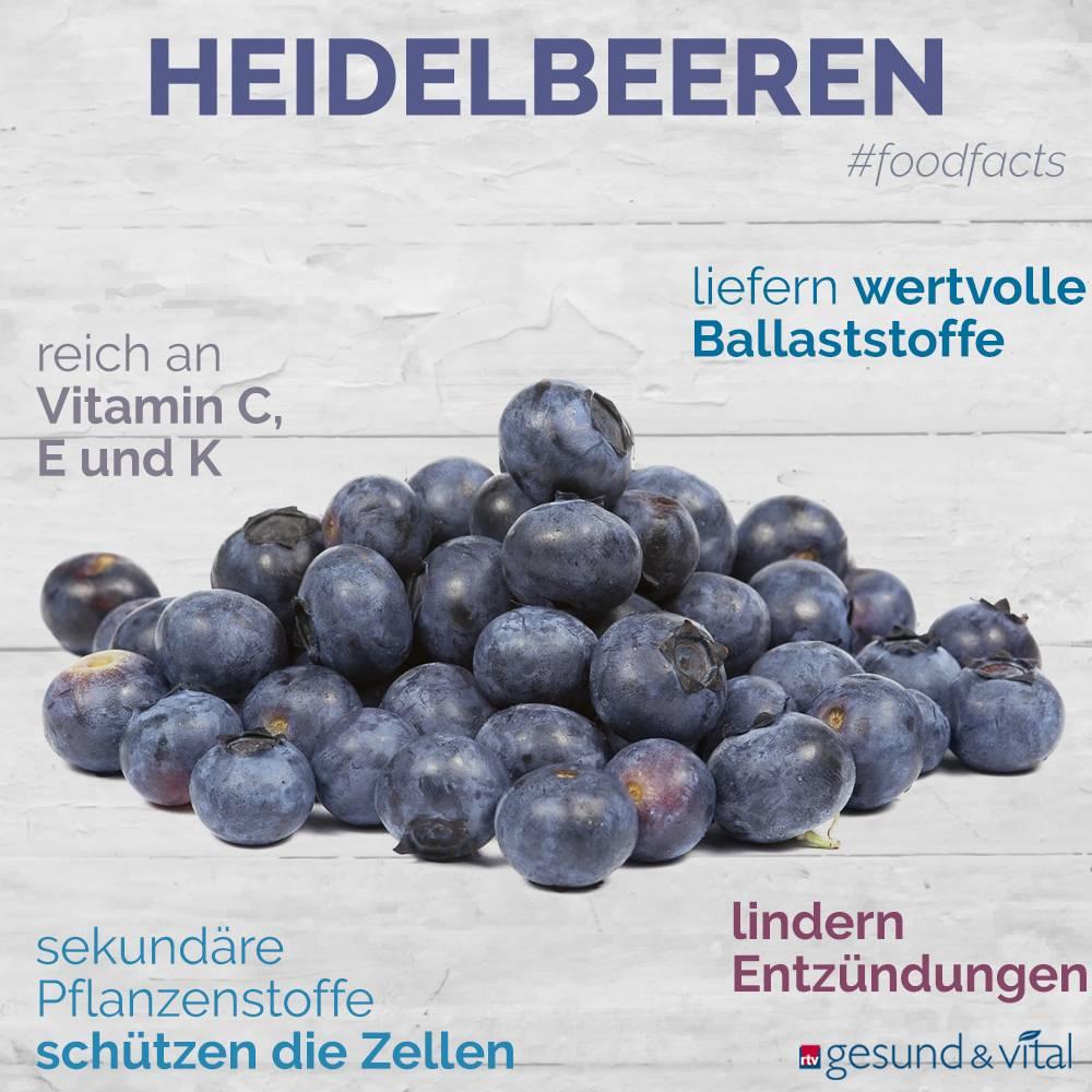 Eine Grafik mit Fakten zu Heidelbeeren. Sie zeigt Wissenswertes über die gesunden Inhaltsstoffe und die gesundheitlichen Vorteile des Beerenobstes.