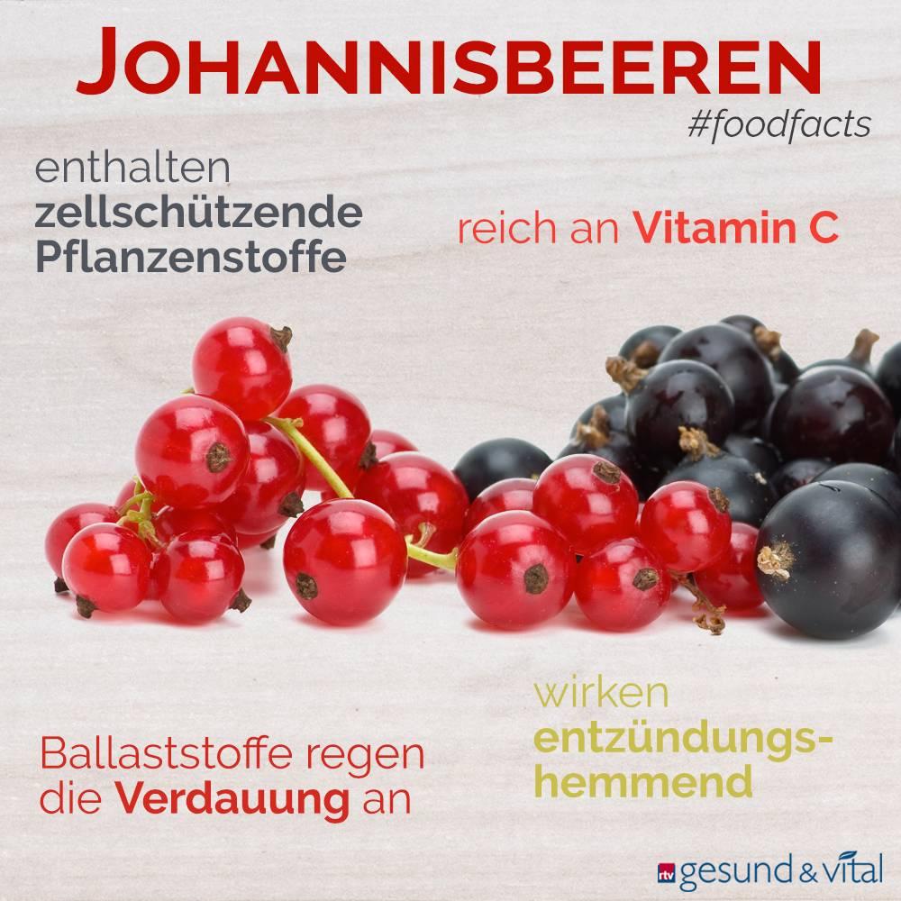 Eine Grafik mit verschiedenen Fakten zu Johannisbeeren. Sie zeigt Wissenswertes über die gesunden Inhaltsstoffe und die Wirkung der Frucht.