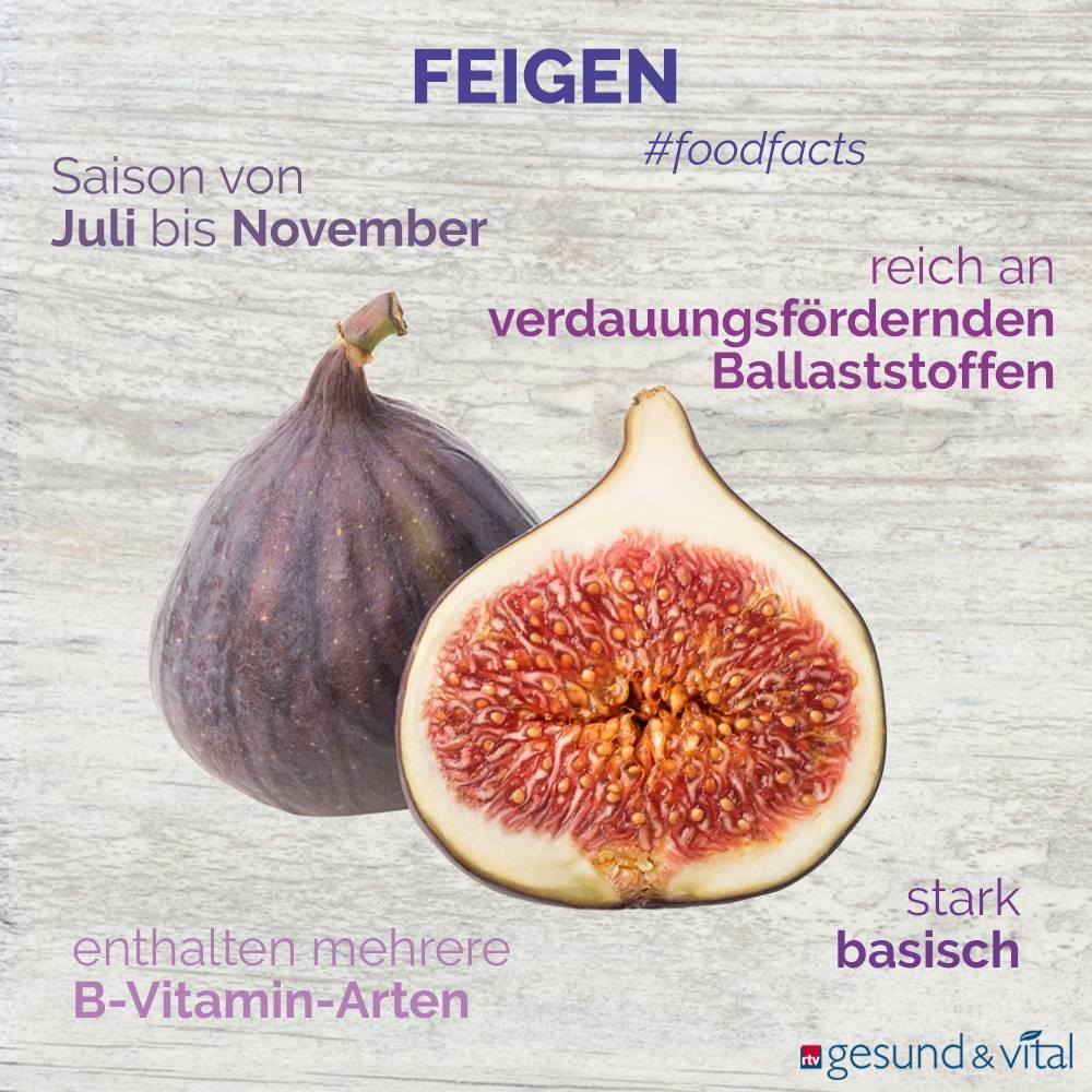 Eine Grafik mit verschiedenen Fakten zu Feigen. Sie zeigt Wissenswertes über die Inhaltsstoffe und die Wirkung der Früchte.
