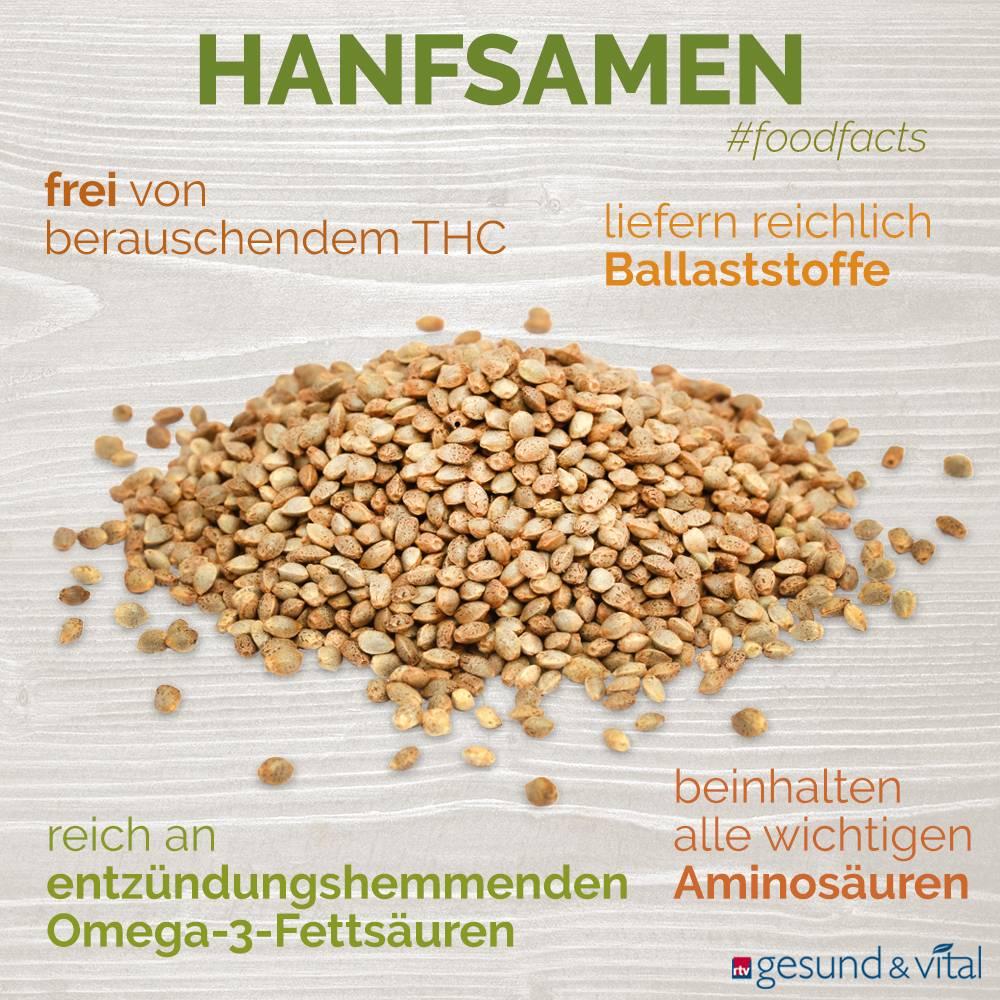 Eine Grafik mit verschiedenen Fakten zu Hanfsamen. Sie zeigt Wissenswertes über die Inhaltsstoffe der der Samen.