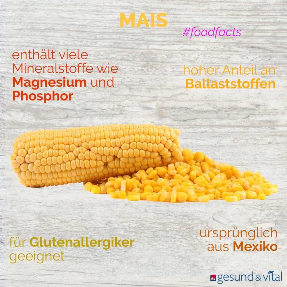 Eine Grafik mit verschiedenen Fakten zu Mais. Sie zeigt Wissenswertes über die Inhaltsstoffe der Körner.