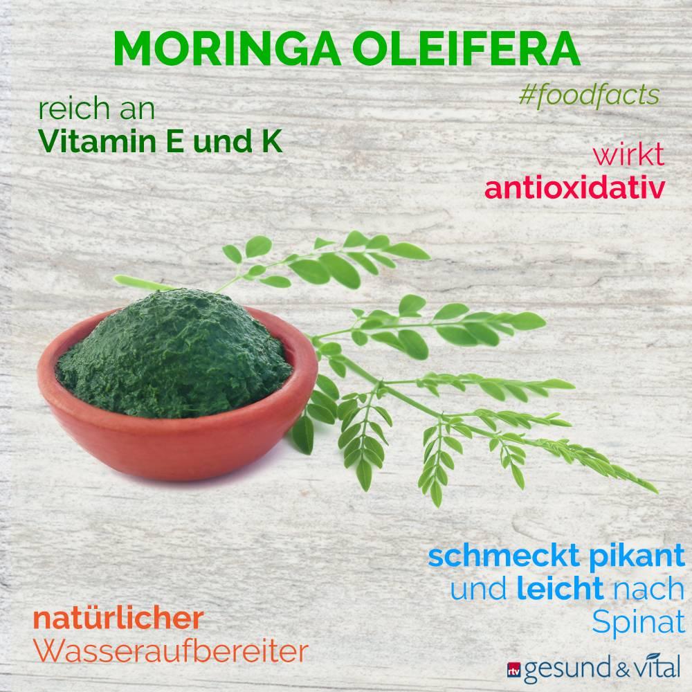 Eine Grafik mit verschiedenen Fakten zu Moringa Oleifera. Sie zeigt Wissenswertes über die Inhaltsstoffe und Wirkung der Blätter.