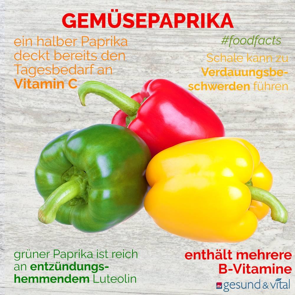 Eine Grafik mit verschiedenen Fakten zu Paprika. Sie zeigt Wissenswertes über die Inhaltsstoffe des Gemüses.