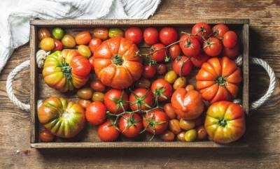 Mehrere frische Tomatensorten auf einem Holztablett