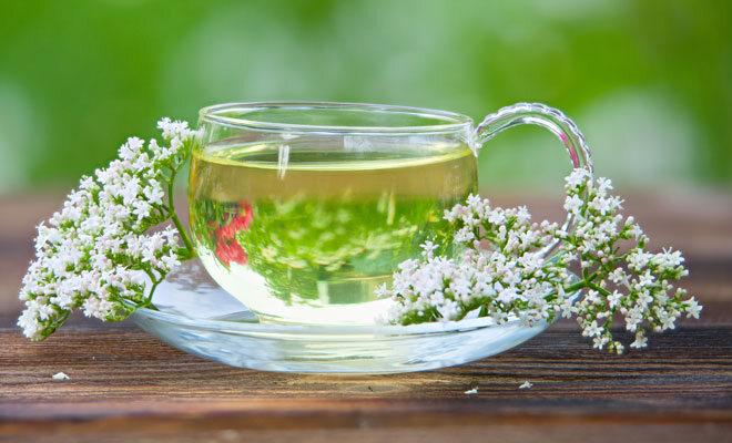 Heilpflanzen wie Baldrian helfen gegen innere Unruhe in den Wechseljahren