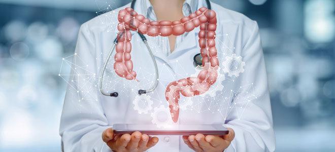 Die Wissenschaft vermutet einen Zusammenhang zwischen Darmflora und Magersucht