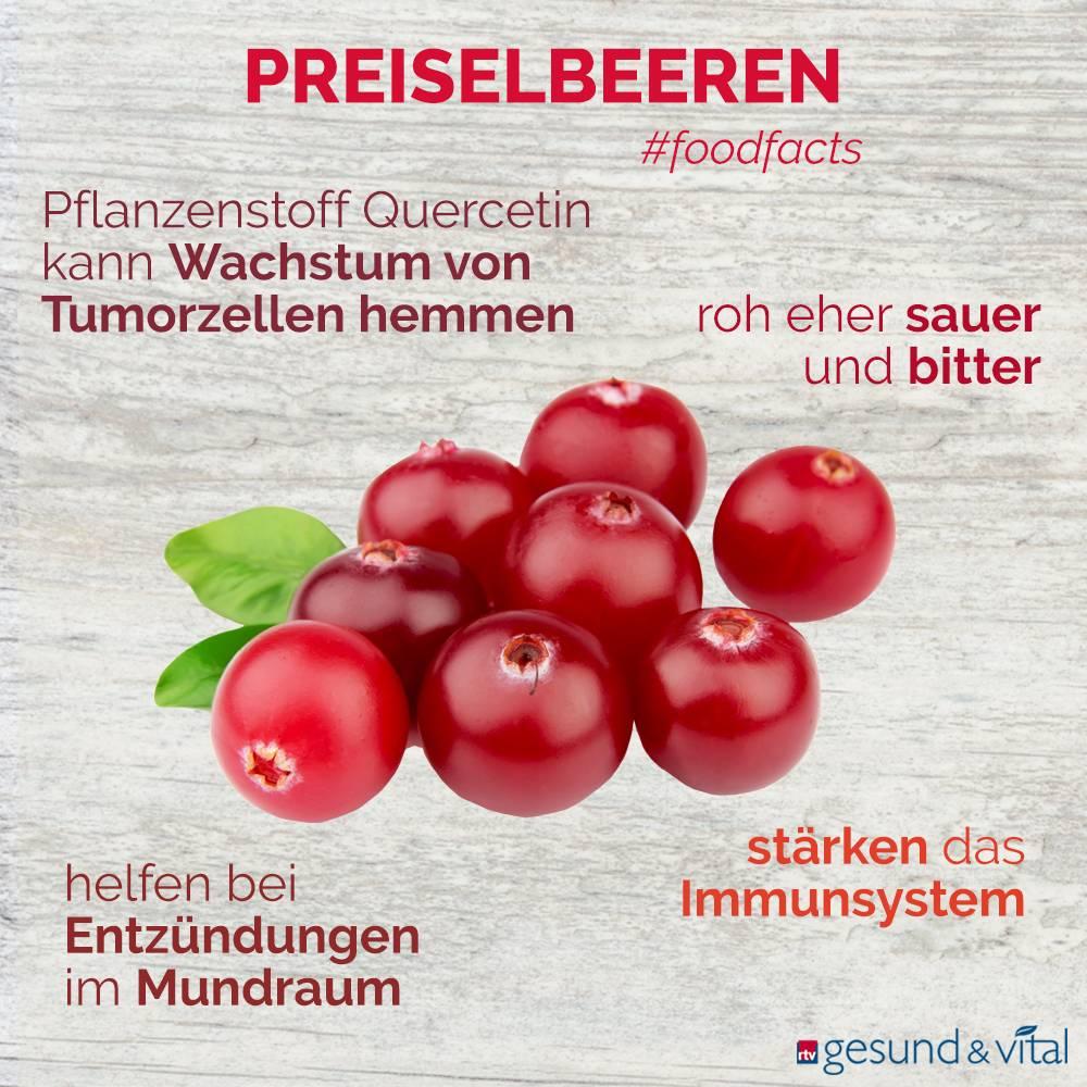 Eine Infografik mit verschiedenen Fakten zu Preiselbeeren. Sie zeigt Wissenswertes über die Inhaltsstoffe und Wirkung der roten Früchte.