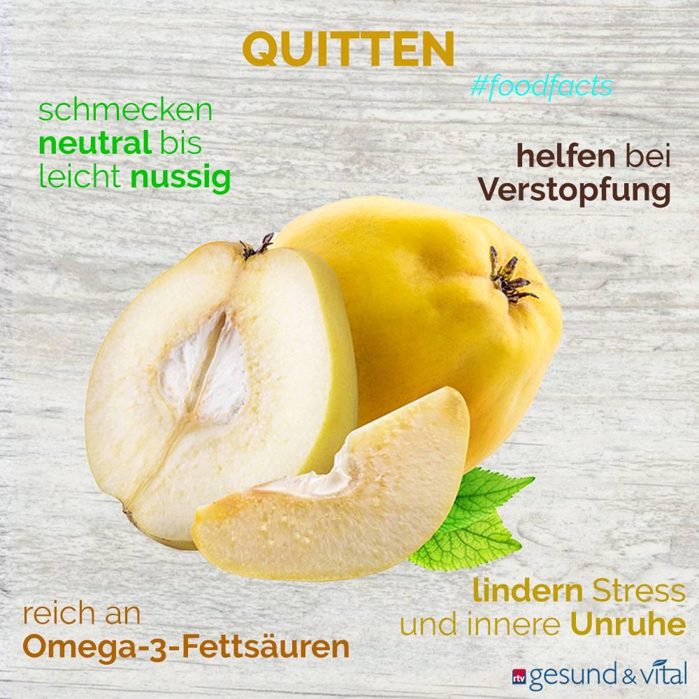 Eine Infografik mit verschiedenen Fakten zu Quitten. Sie zeigt Wissenswertes über die Inhaltsstoffe und Wirkung der Früchte.