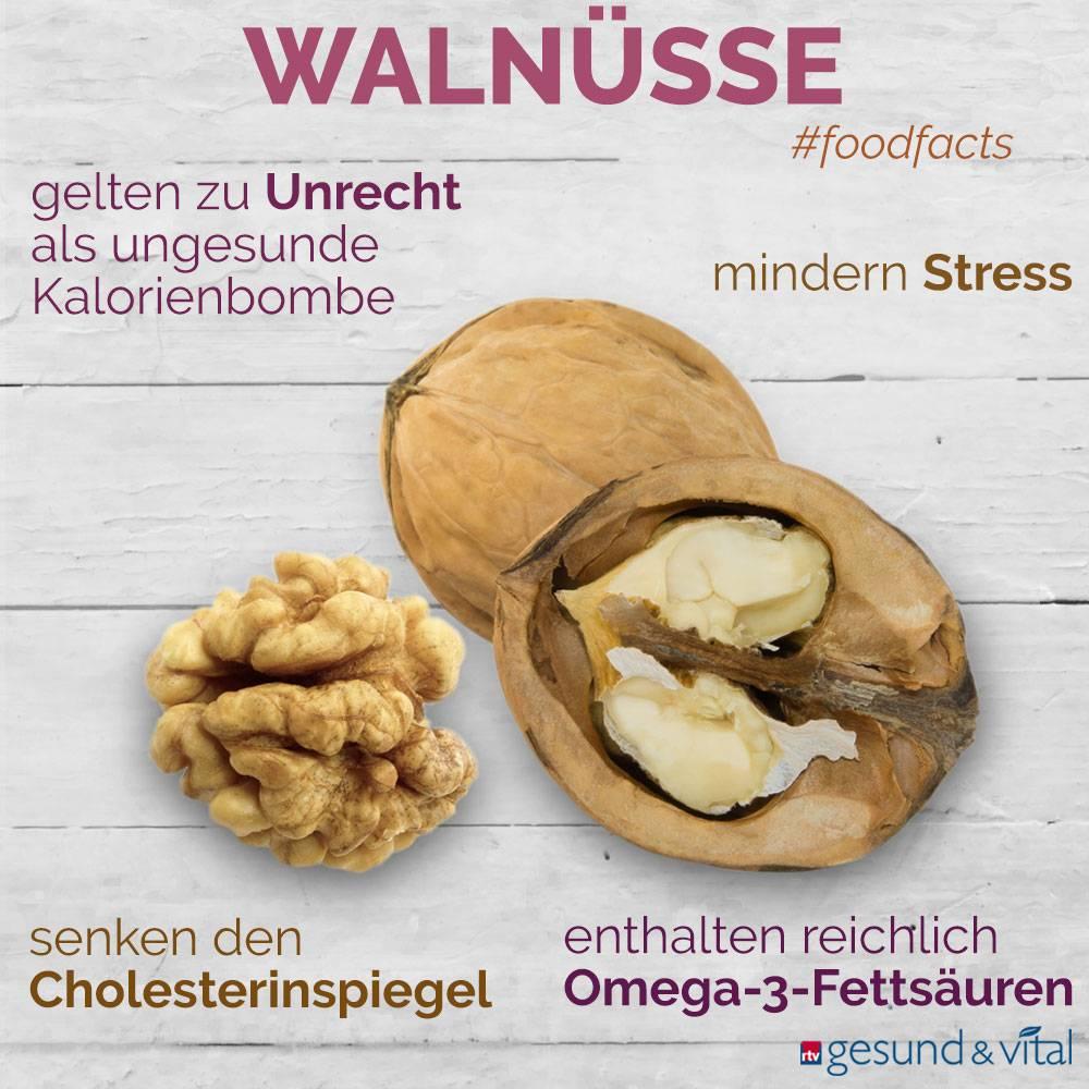Eine Infografik mit verschiedenen Fakten zu Walnüssen. Sie zeigt Wissenswertes über die Inhaltsstoffe und Wirkung der Nüsse.