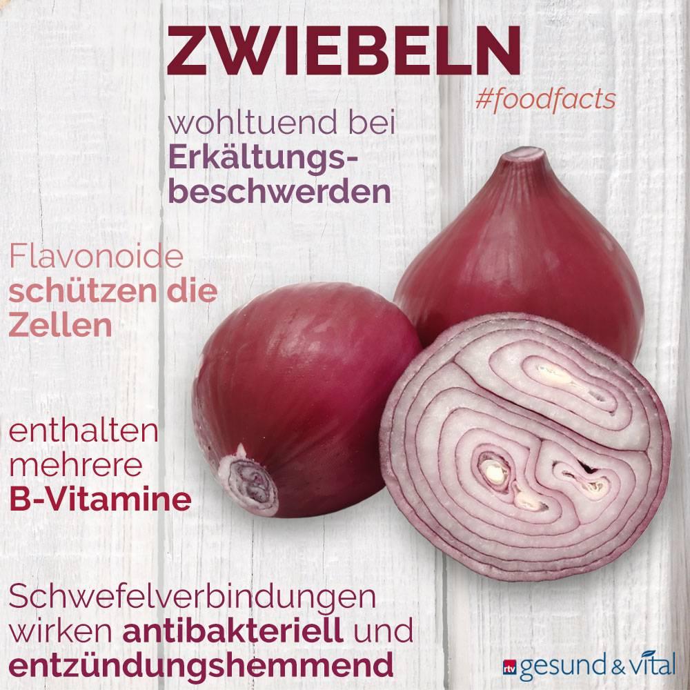 Eine Grafik mit verschiedenen Fakten zu Zwiebeln. Sie zeigt Wissenswertes über die Inhaltsstoffe und Wirkung des Gemüses.