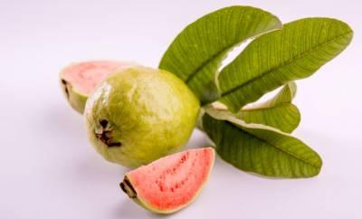 Eine frische Guave mit Blättern