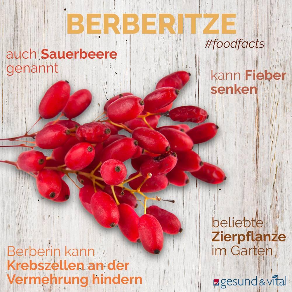 Eine Infografik mit verschiedenen Fakten zu Berberitzen. Sie zeigt Wissenswertes über die Wirkung der roten Früchte.