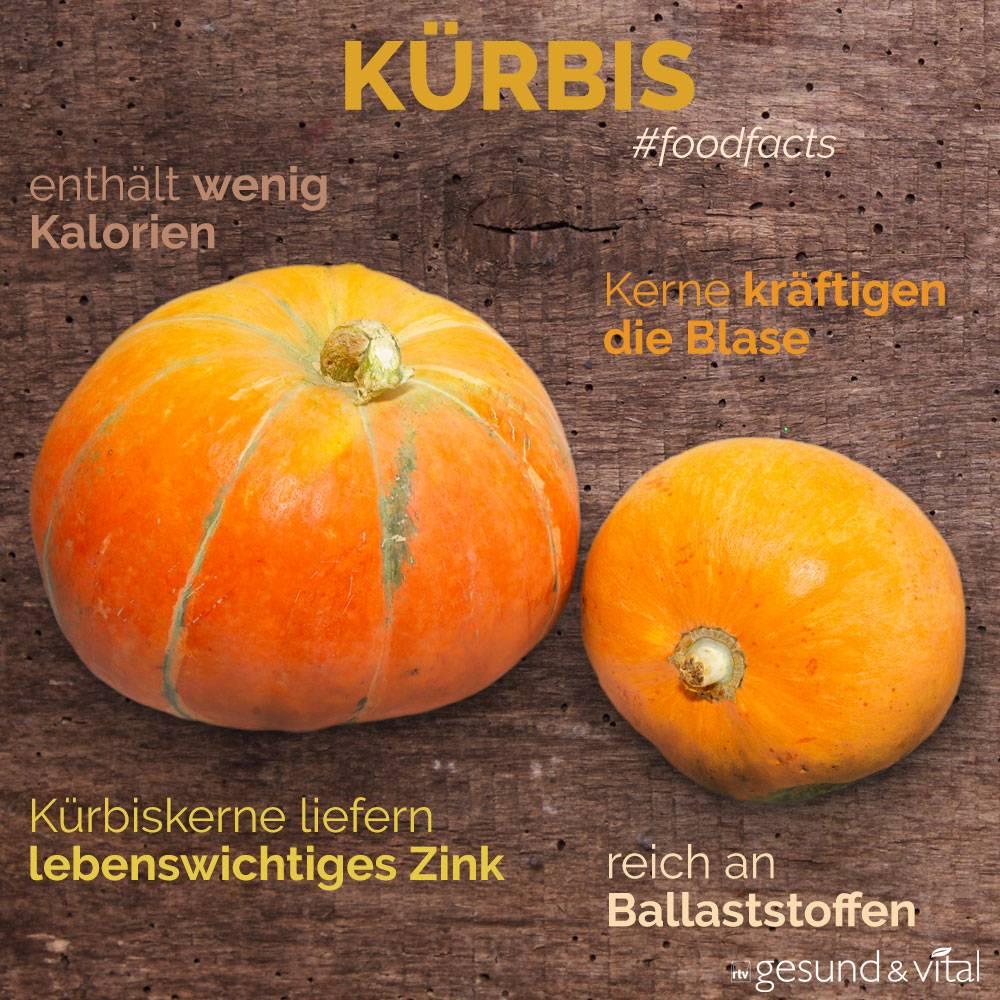 Eine Infografik mit verschiedenen Fakten zu Kürbis. Sie zeigt Wissenswertes über die Inhaltsstoffe von Kürbis.