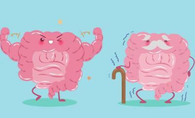 Illustration eines alten, kränkelnden Darms, der wieder fit und stark wird.