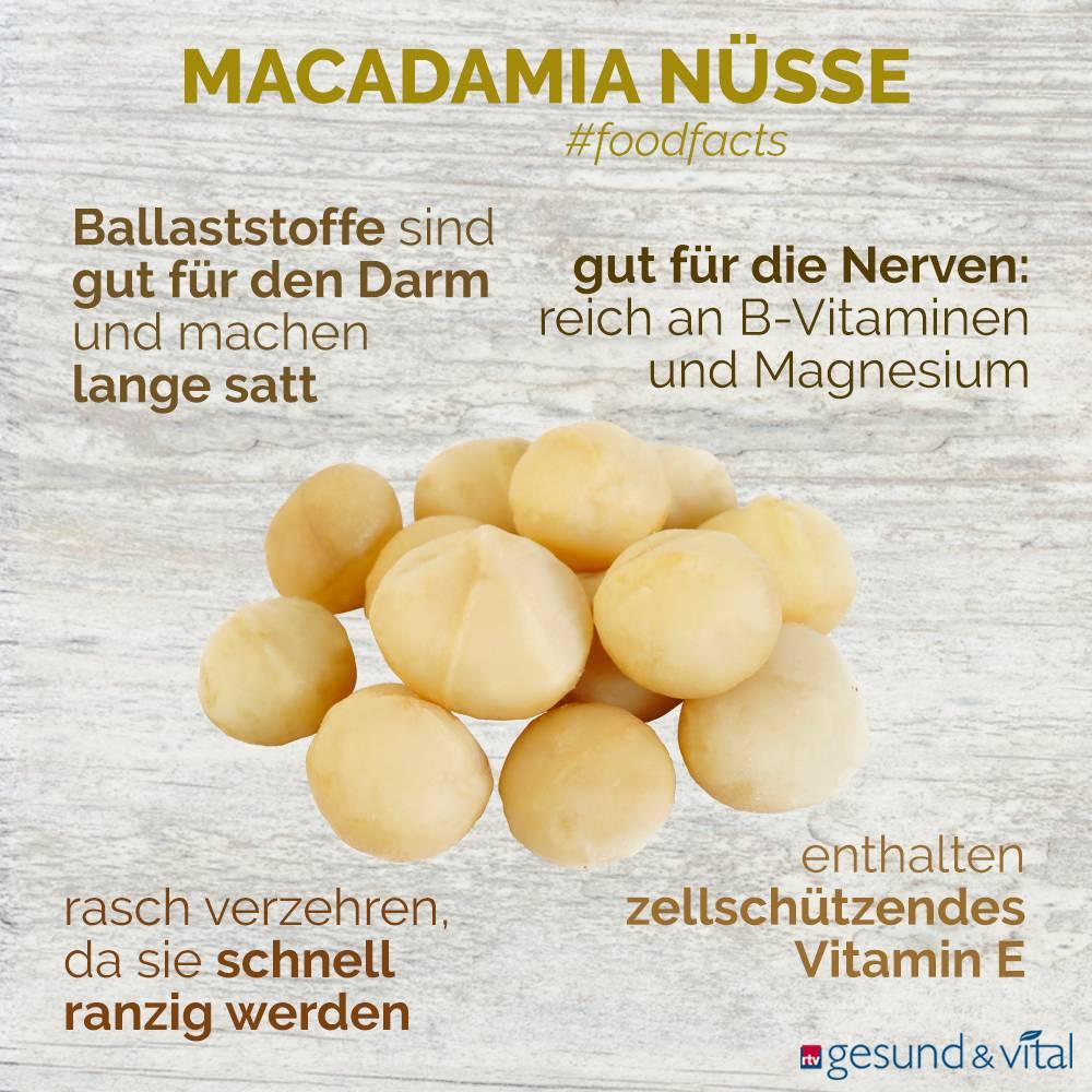 Eine Infografik mit verschiedenen Fakten zu Macadamia. Sie zeigt Wissenswertes über die Inhaltsstoffe und Wirkung der Nüsse.