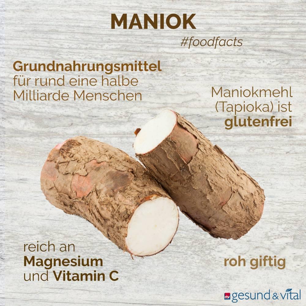 Eine Infografik mit verschiedenen Fakten zu Maniok. Sie zeigt Wissenswertes über die Inhaltsstoffe der Wurzel.